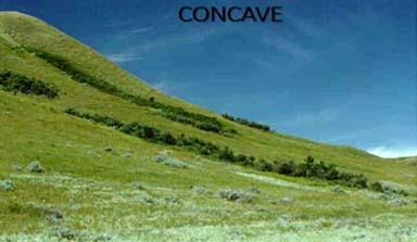 Concave-1